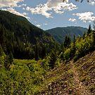 The Trail Worsens by Michael Garson