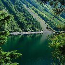 Thunder Lake Through the Trees by Michael Garson