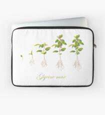 Soybean (Glycine max) plant development Laptop Sleeve
