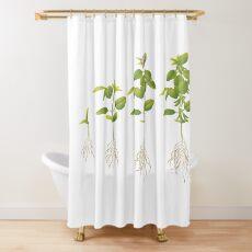 Soybean (Glycine max) plant development Shower Curtain