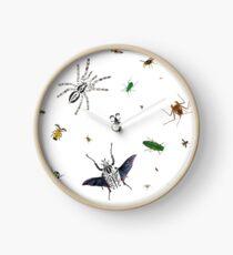 Entomologist's Dream Clock