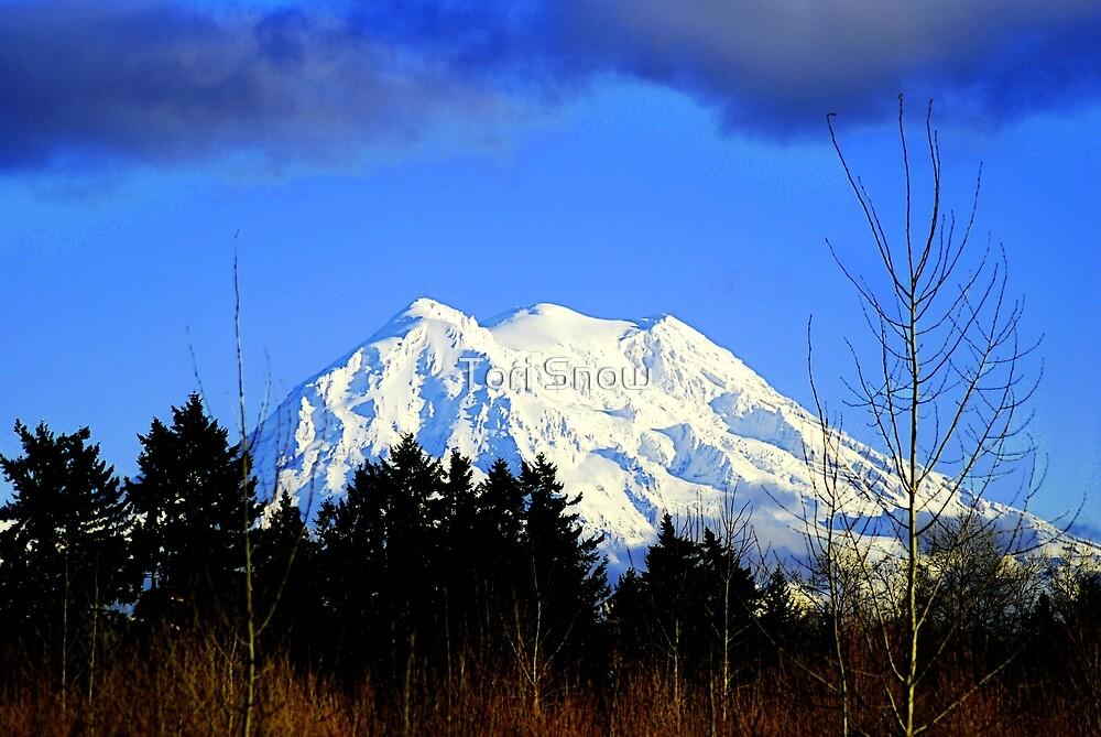 Mt. Rainier in HDR by Tori Snow