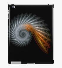 Titanium Spiral iPad Case/Skin