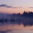 02 febuary - Sailboats at Sunrise by Michael Garson