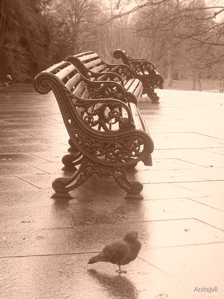Greenwich Park by Anitajuli