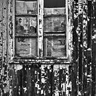 Window by Stefan Kutsarov