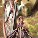 No Bike Ride Today by Sue Knowles
