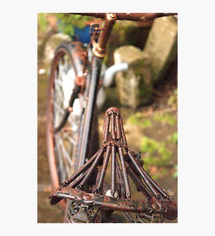 No Bike Ride Today Photographic Print