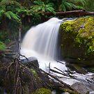 Ampitheatre Falls by primovista