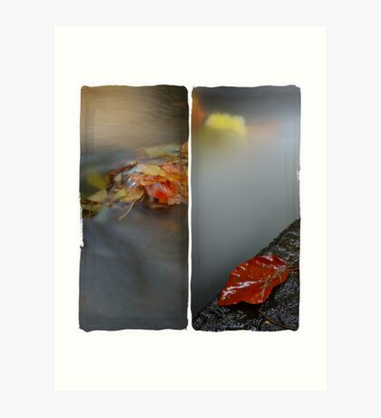 Autumn Water Art Print