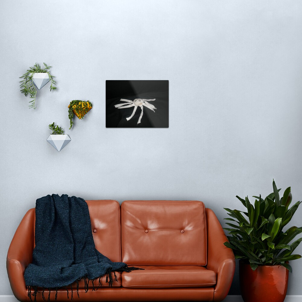 white spider Metal Print
