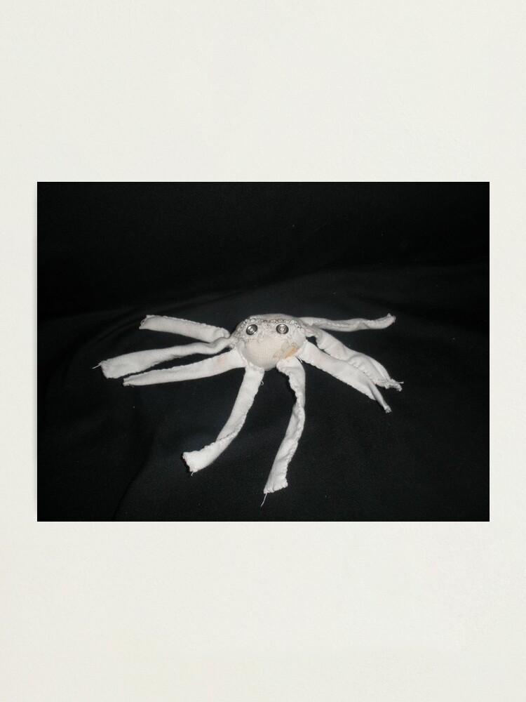 Alternate view of white spider Photographic Print