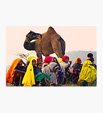 The United Colors of Rajasthan Photographic Print