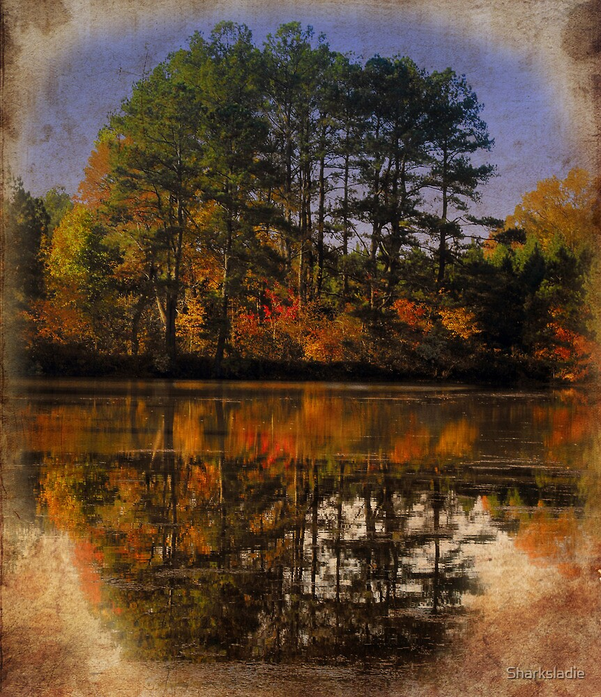 Color on Fall Lake by Sharksladie