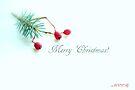 Merry Christmas by aMOONy