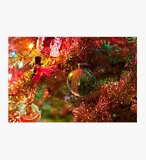 Christmas tree close up. Photographic Print