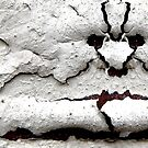 Skull Kandy by hardhhhat