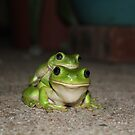 Froggy Style by Cathie Trimble