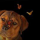 Wunderlicher und netter Welpe mit Schmetterlingen von Stephanie Laird