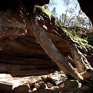 Alligator Gorge - Southern Flinders Ranges by Michael Selge