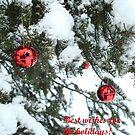 Season's greetings by Marie-Eve Boisclair