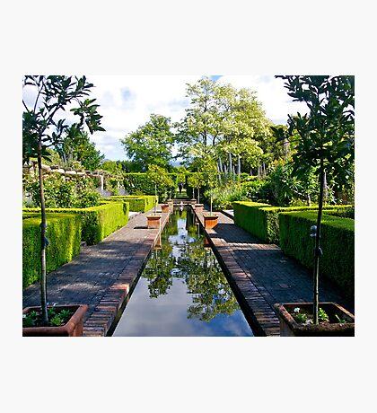 Winterhome Garden, Kekerengu, South Island, New Zealand. Photographic Print