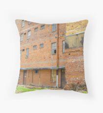 Run Down & Abandoned Throw Pillow