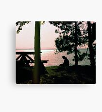 Lake Golden Canvas Print
