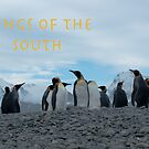 King Penguins by Rosie Appleton