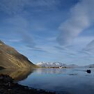Grytviken by Rosie Appleton