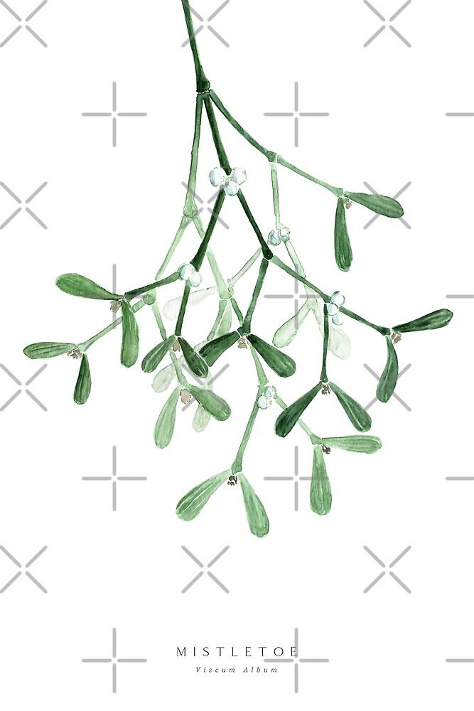 Watercolor mistletoe illustration by blursbyai