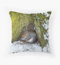 Grey Squirrel with its Food Store Throw Pillow