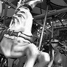 Carousel 52 by Joanne Mariol