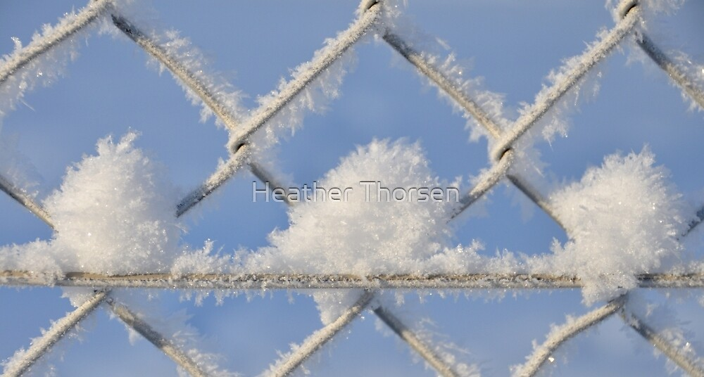 Frosticles by Heather Thorsen