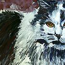 TUNDRA CAT by hdettman