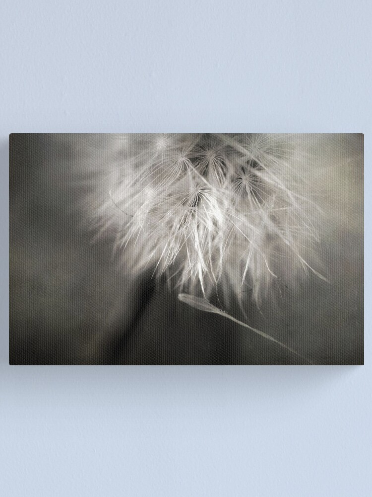 Alternate view of Separation of Love Canvas Print