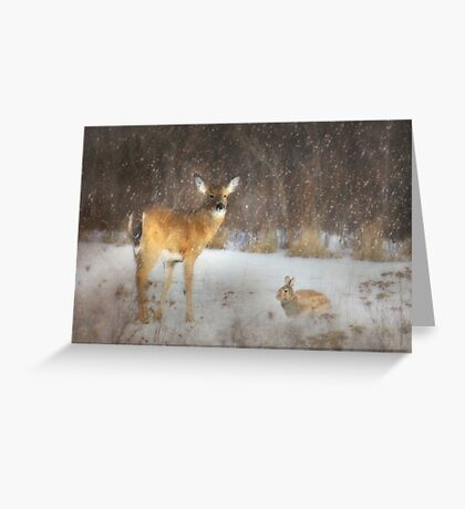 Feed the Animals Greeting Card