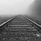 Vanishing point by Steve Biederman