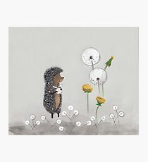 Nursery art - Hedgehog in the Fog Photographic Print