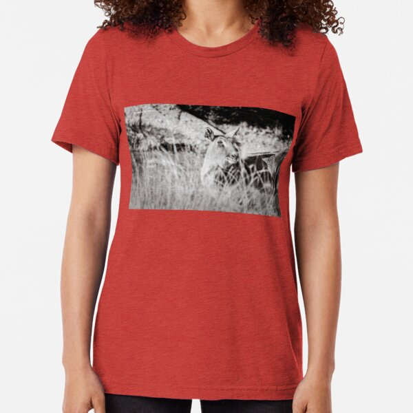 black and white portrait of an innocent doe Tri-blend T-Shirt
