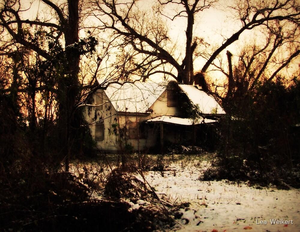 Twilight by Lea  Weikert