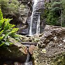 Snug Falls by Mike Calder
