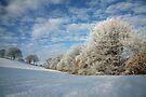 Winter Wonderland by John Keates