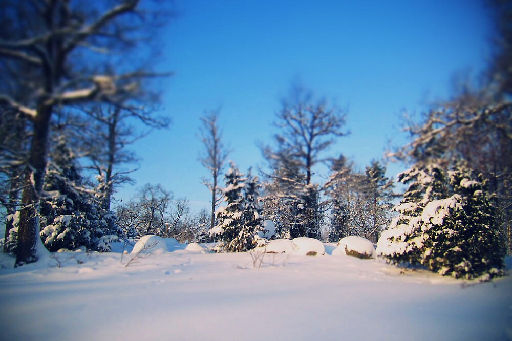lovely winter, there you are., by subtitulo