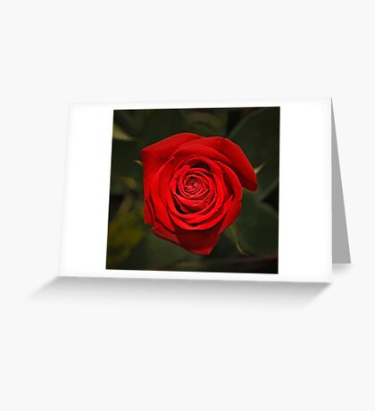 Love Abound Greeting Card
