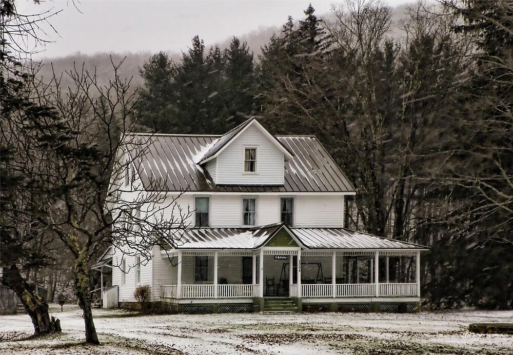 Quiet Winter Cottage by Pamela Phelps