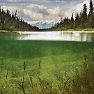 Pine Creek, Yukon by Marty Samis