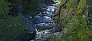 At Dog Falls by WatscapePhoto
