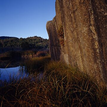 Rock Face And Grass by JLWoody15Wooden
