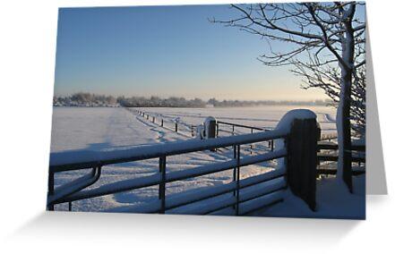 Snowy Gates by John Dunbar